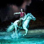 Rachel Gauthier, Circus Star 2016 performer