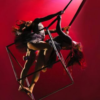 circus-star-usa-prize-aerial-couture
