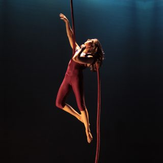 circus-star-usa-prize-lynn